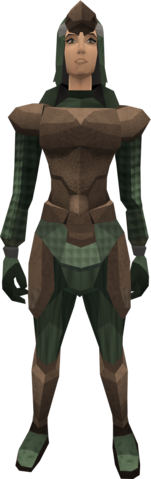 File:Paraleather armour (female) equipped.png