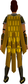 Team-20 cape equipped