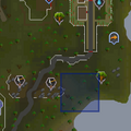 Evil Tree (south of Legends' Guild) location.png
