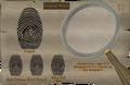 Miss Schism fingerprint.png