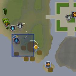 File:Ani (farming merchant) location.png