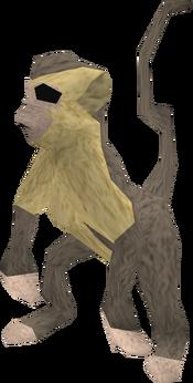 Baby monkey (grey and beige) pet