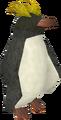 Macaroni penguin.png