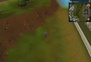 Compass clue Edgeville west of Edgeville Monastery