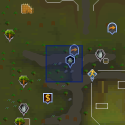 Familiarisation (Tree Gnome Stronghold) location