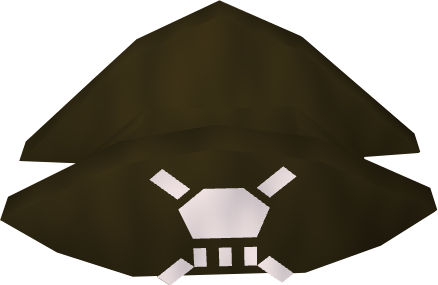 File:Pirate's hat detail.png