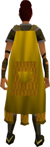 File:Team-11 cape equipped.png