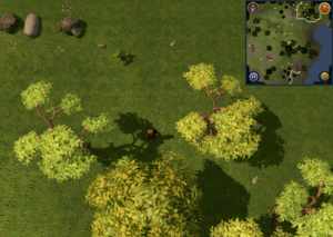 Scan clue Piscatoris Hunter area north-west of Tree Gnome Stronghold