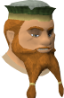 File:Hofuthand chathead old.png