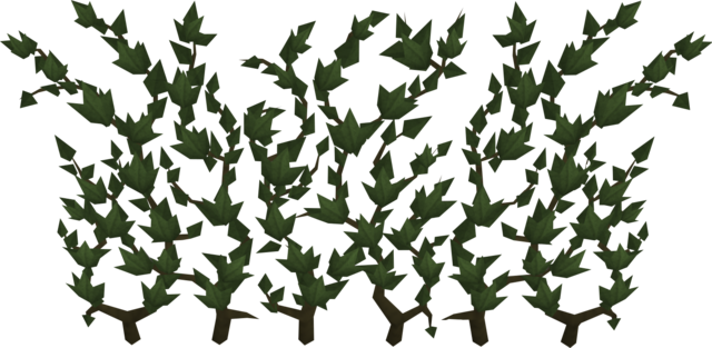 File:Ivy.png