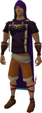 File:Divination hood equipped.png