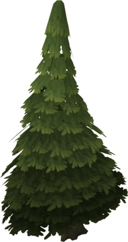 File:Evergreen tree.png