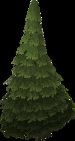Plik:Evergreen tree.png