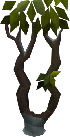 File:Thigat tree.png