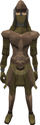 File:Dromoleather armour (female) equipped.png