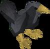 Blackbird detail