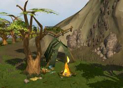Nickolaus's camp