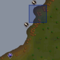 Jungle strykewyrm location.png