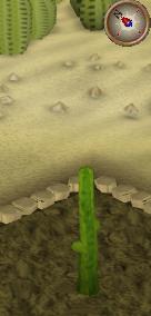 File:Cactus3.png