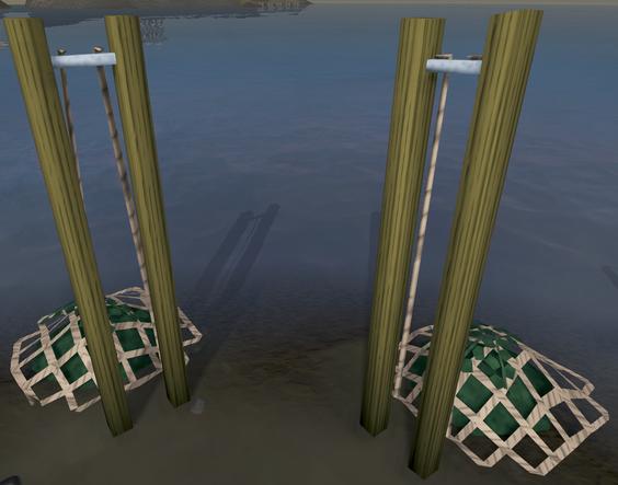 File:Seaweed nets.png
