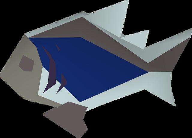 File:Burnt rainbow fish detail.png