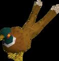 Pheasant2tail