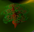 Yew tree rsc.png