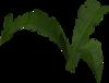 Fern (small plant) built