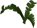 Fern (small plant) built.png