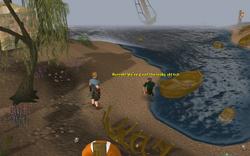 Sea Slug Repairing Holgart's boat