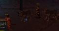 Hunt for Surok wolves.png