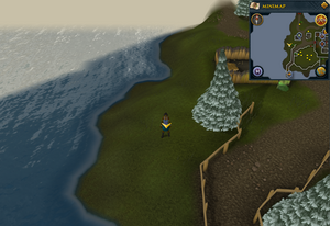 Scan clue Fremennik Isles Neitiznot south-west of summoning obelisk