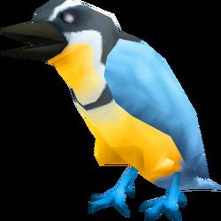 Plover bird (NPC)