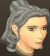 File:Female hair princess.png