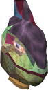 File:Helm of Mutation chathead.png