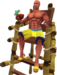 Lifeguard 3