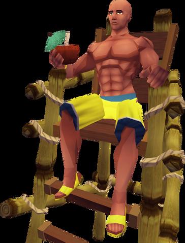 File:Lifeguard 3.png