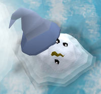 Snow mage (melted)