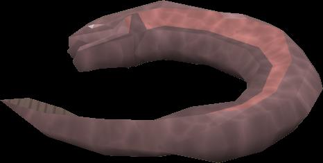 File:Vile fish detail.png