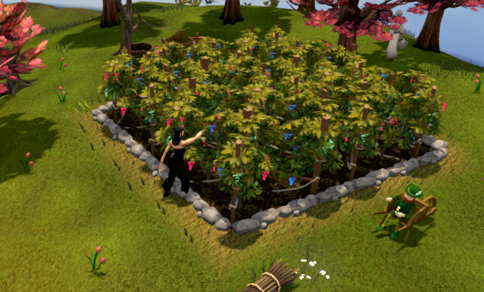 File:Farming grapevines.png