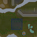 Evil Tree (Castle Wars) location.png