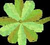 Green vine blossom detail