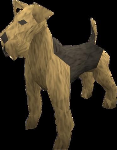 File:Terrier (tan) pet.png