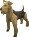 Terrier (tan) pet.png