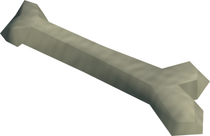 File:Humerus bone detail.png