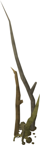 File:Tree Roots.png