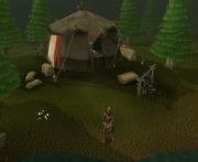 Lady Hefin tent