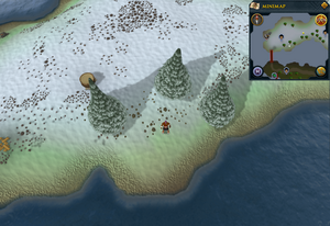 Scan clue Fremennik Isles east of bridge to south-west snowy island