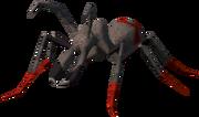 Bull ant.png