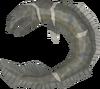 Raw dusk eel detail